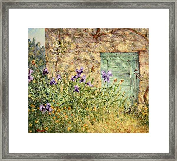 Irises At The Old Barn Framed Print