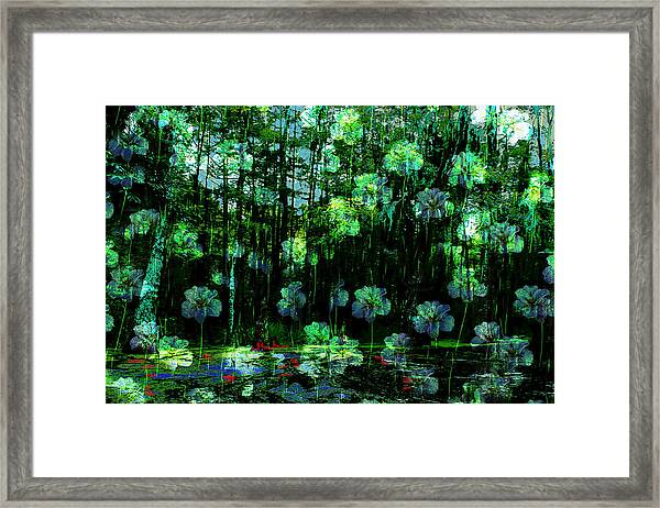 Irises Falling From A Southern Sky  Framed Print
