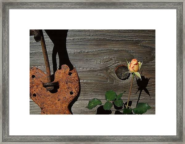 Iron Flower Framed Print by Mark Stevenson