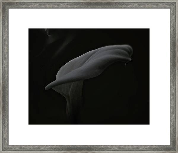 Is There A Ghost? Framed Print