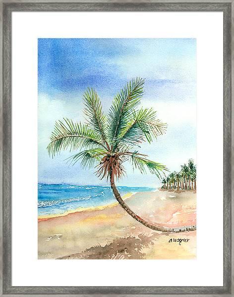 Island Palm Framed Print
