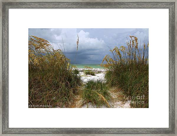 Island Trail Out To The Beach Framed Print