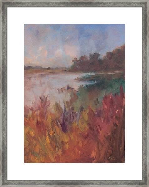 Island View Framed Print
