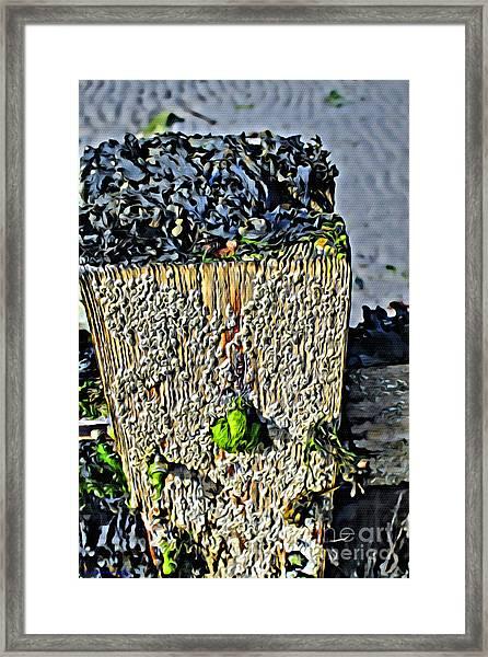 Isle Of Man Low Tide Framed Print