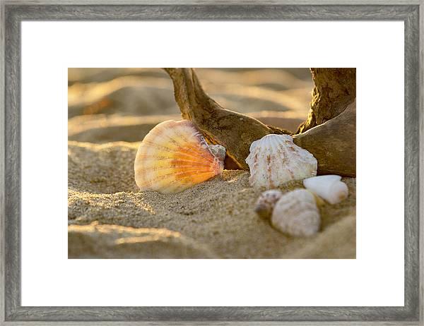 It's A Beach Thing Framed Print