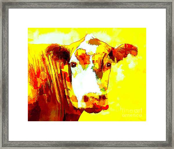 Yellow Cow Framed Print