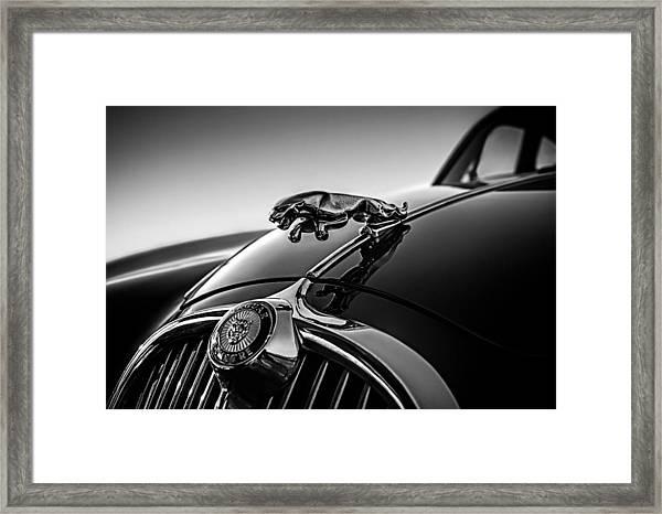 Jaguar Mascot Framed Print