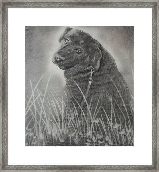 Jake The Dog Framed Print