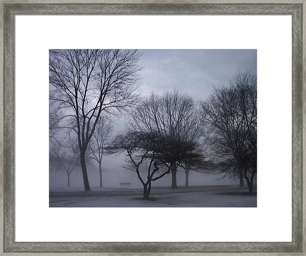 January Fog 6 Framed Print