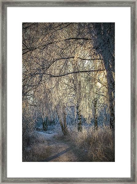 January,1-st, 14.35 #h4 Framed Print