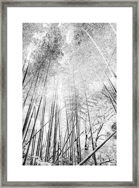 Japan Landscapes Framed Print