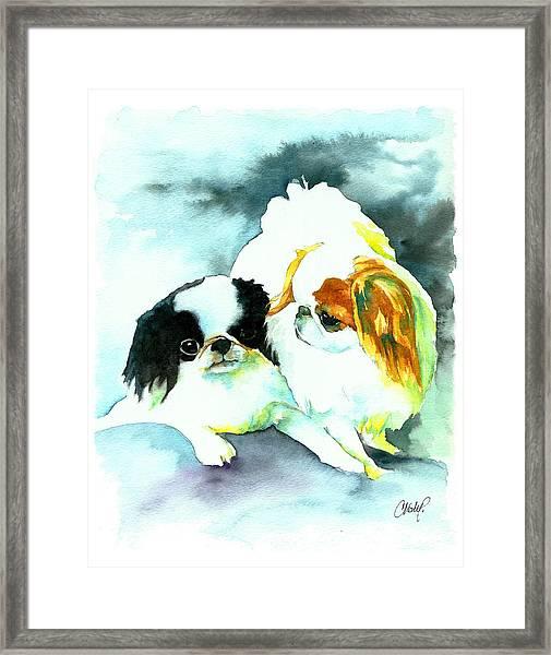 Japanese Chin Dog Framed Print