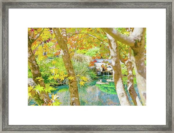 Japanese Garden Pond Framed Print