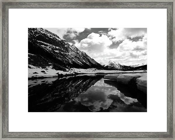 Jasper 8 Framed Print