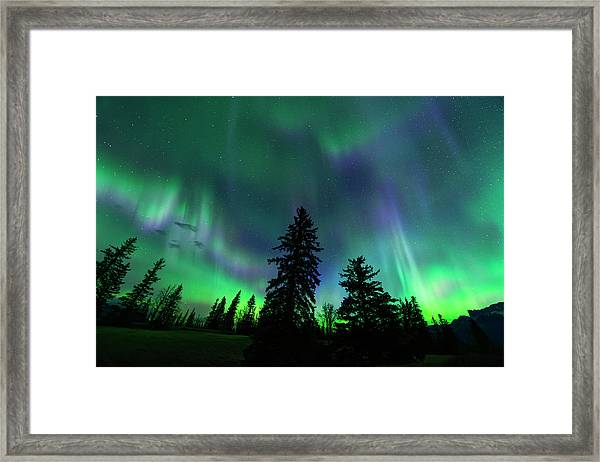 Jasper National Park Aurora Framed Print
