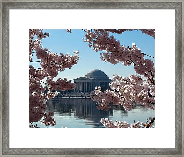 Jefferson Memorial At Cherry Blossom Time On The Tidal Basin Ds008 Framed Print