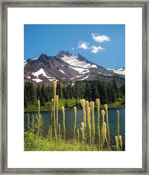 Jefferson Park Framed Print