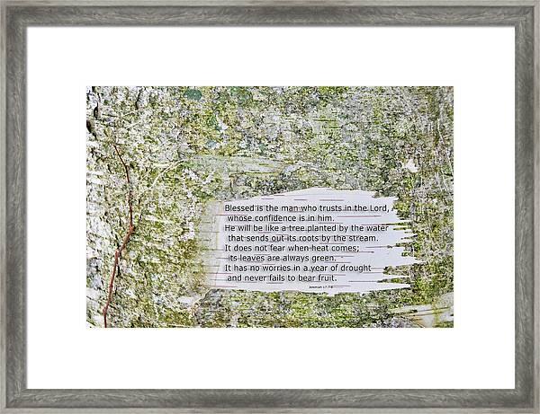 Jeremiah 17 Framed Print