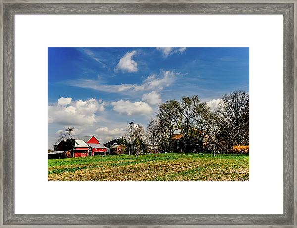Jersey Jerrys Apple Farm Framed Print