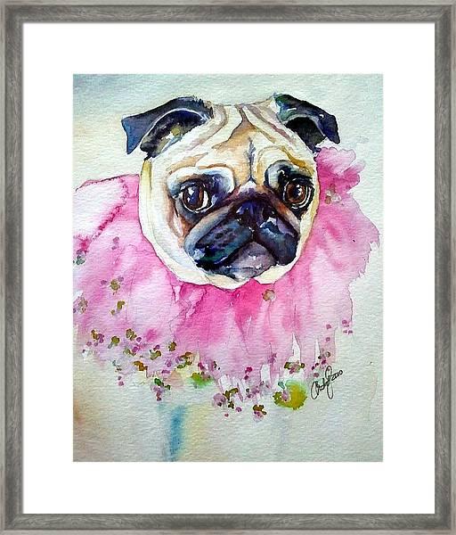 Jester Pug Framed Print