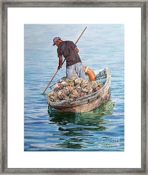 Jewels Of The Sea Framed Print