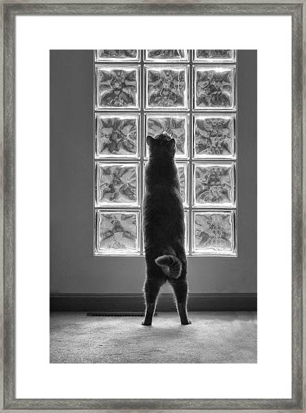 Joseph At The Window Framed Print