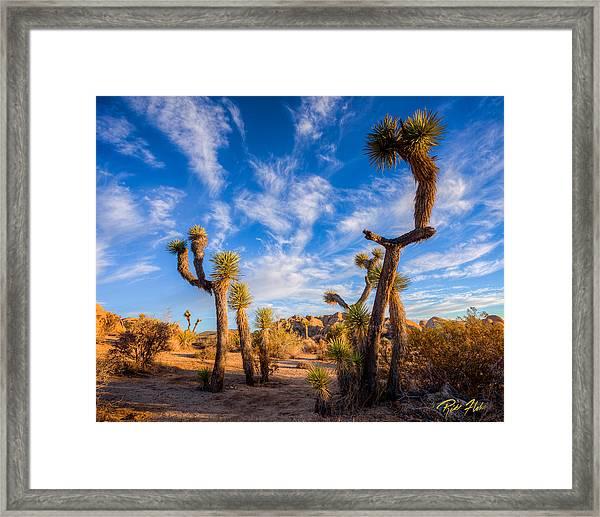 Joshua Tree Dawn Framed Print