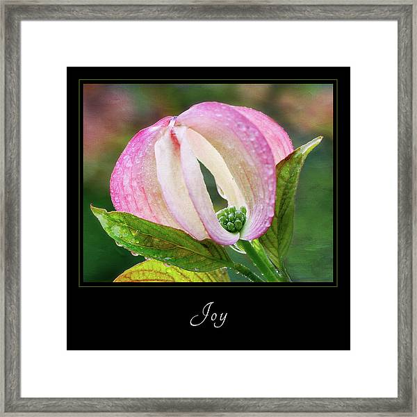 Joy 3 Framed Print