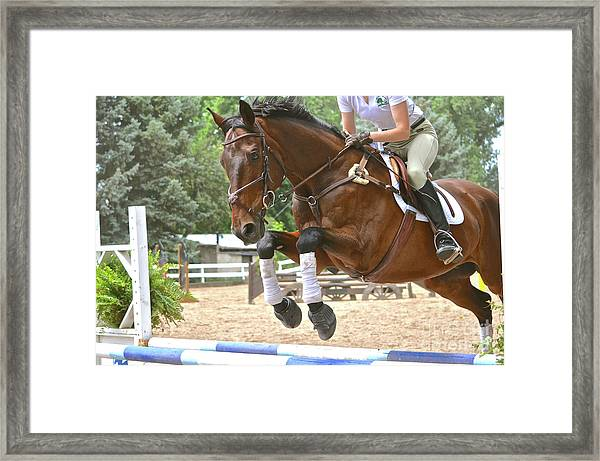 Jumper Framed Print