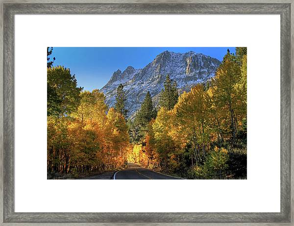 June Lake Loop Framed Print