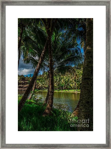 Jungle River Palms Kauai Framed Print