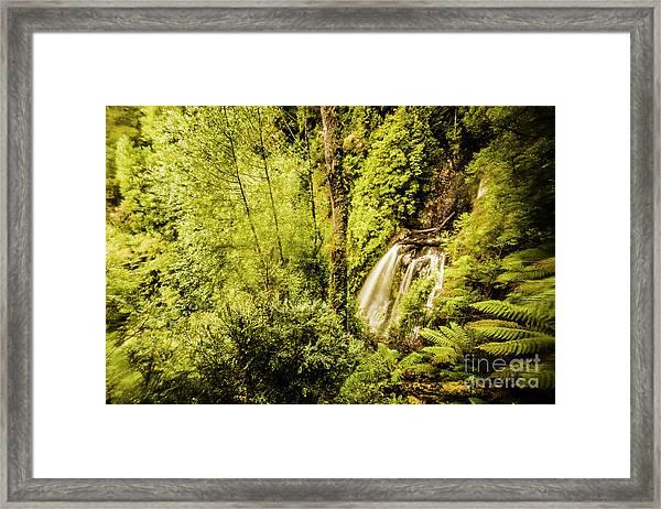 Jungle Steams Framed Print