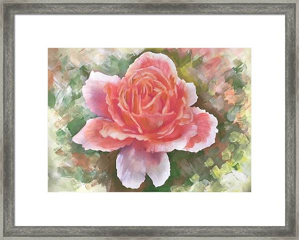 Just Joey Rose From The Acrylic Painting Framed Print