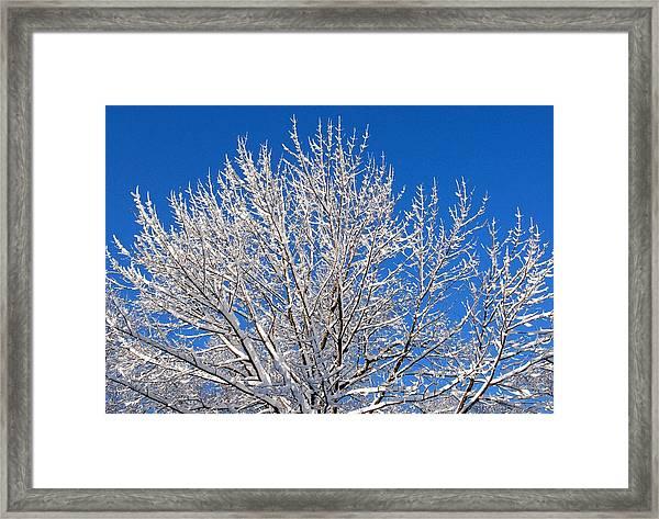Just Look Up Framed Print