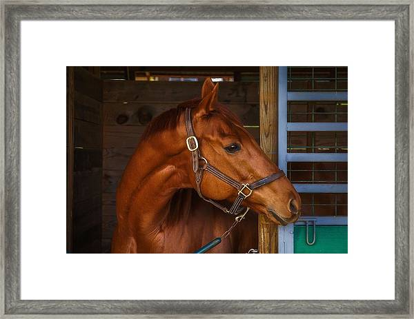 Just Waiting For My Turn To Race Framed Print