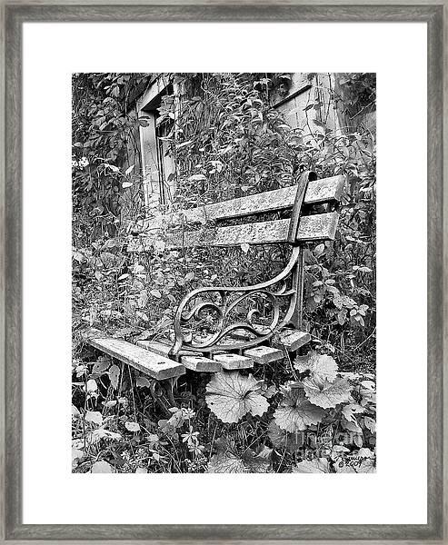 Just Yesterday Framed Print
