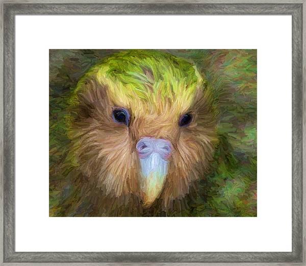 Kakapo Framed Print
