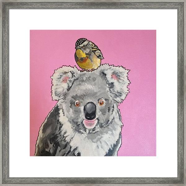 Kalman The Koala Framed Print