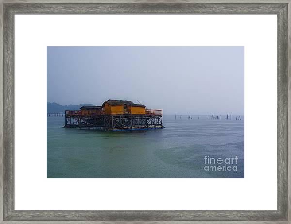 Kalong Framed Print
