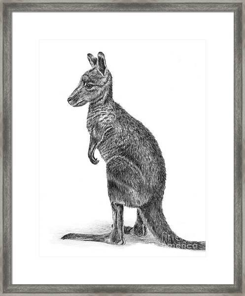 Kanga Framed Print