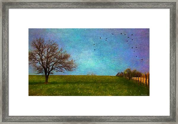 Kansas Early Spring Prairie Framed Print