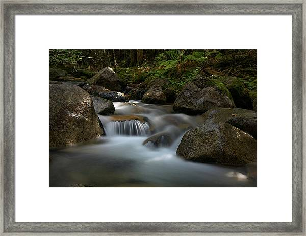 Katahdin Stream In The Shade Framed Print