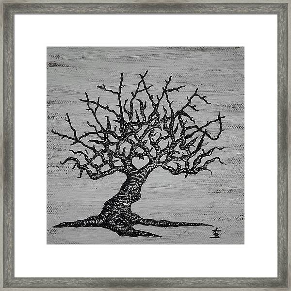 Framed Print featuring the drawing Kayaker Love Tree by Aaron Bombalicki