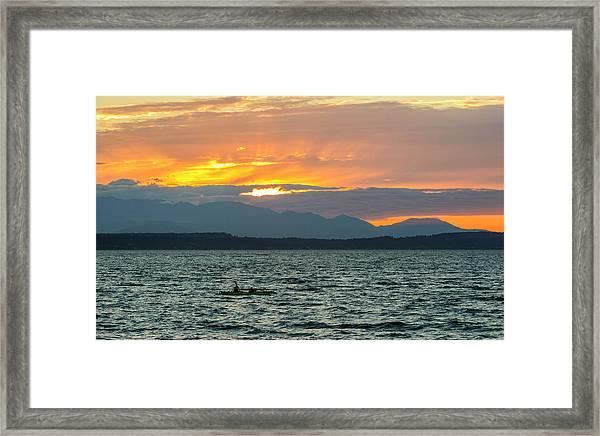 Kayaking In The Puget Sound Framed Print