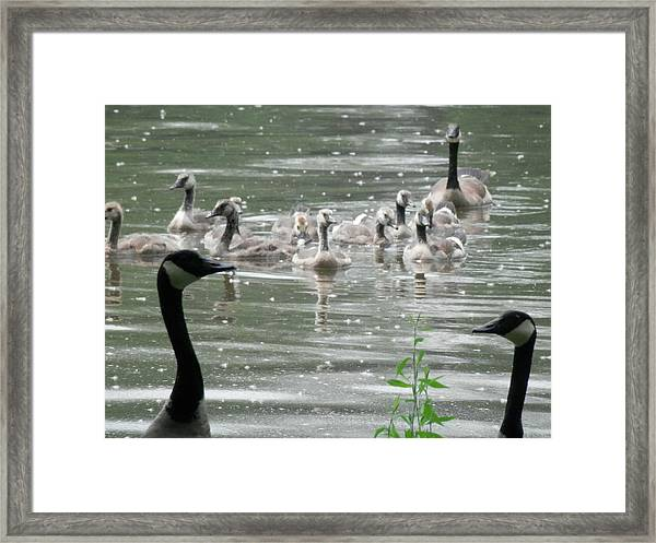 Keepers Of The Gate Framed Print