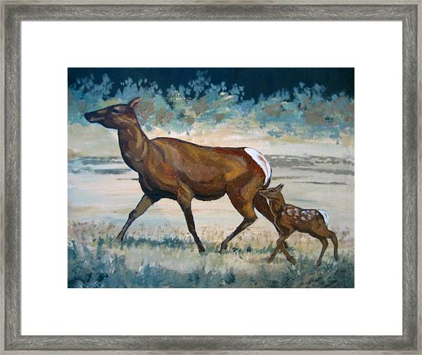Keeping Up With Mama Framed Print