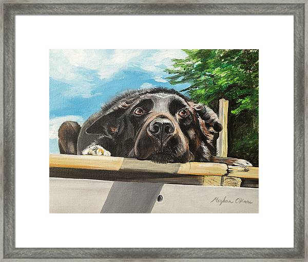 Framed Print featuring the painting Keidis  by Meghan OHare
