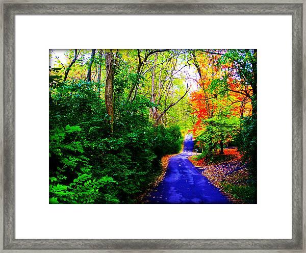 Kentucky Lane Framed Print