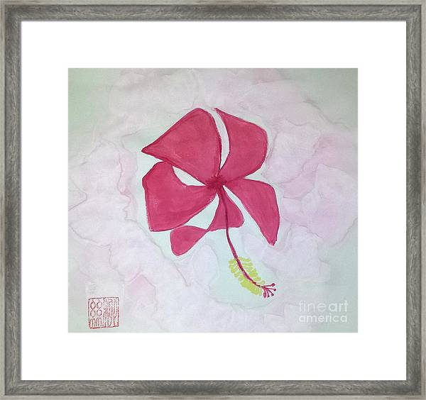 Key West Hibiscus Framed Print