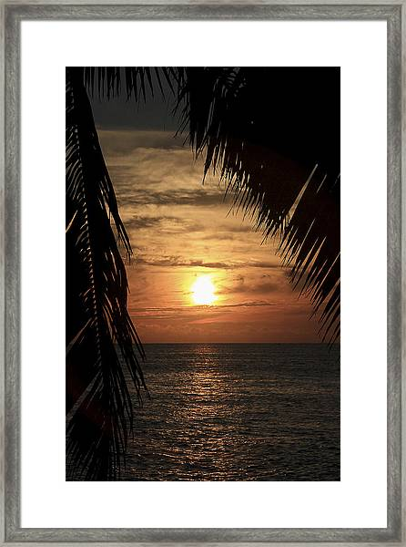 Framed Print featuring the photograph Key West Palm Sunset 2 by Bob Slitzan
